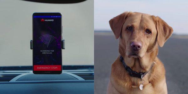 หัวเหว่ยใช้สุนัขทดสอบระบบ