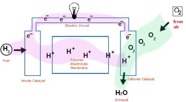ปฏิกิริยาทางเคมีระหว่างไฮโดรเจนและออกซิเจนทำให้ได้พลังงานไฟฟ้าและน้ำ