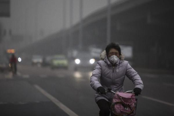 อุตสาหกรรมรถยนต์รวมไปถึงรถยนต์นับเป็นเหตุผลสำคัญของภาวะโลกร้อน