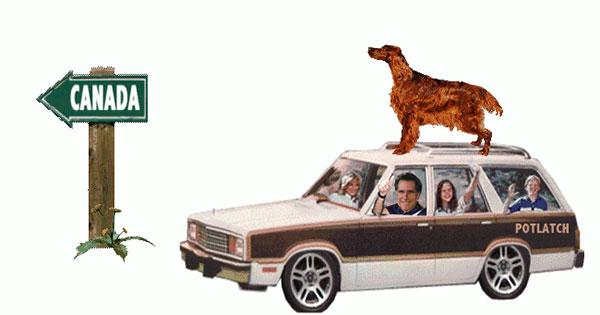 ล่ามสุนัขไว้บนหลังคารถนั้นผิดกฎหมายใน Alaska