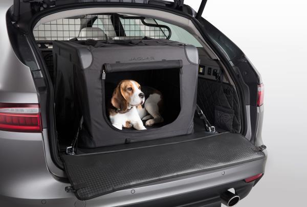 Jaguar Pet Products