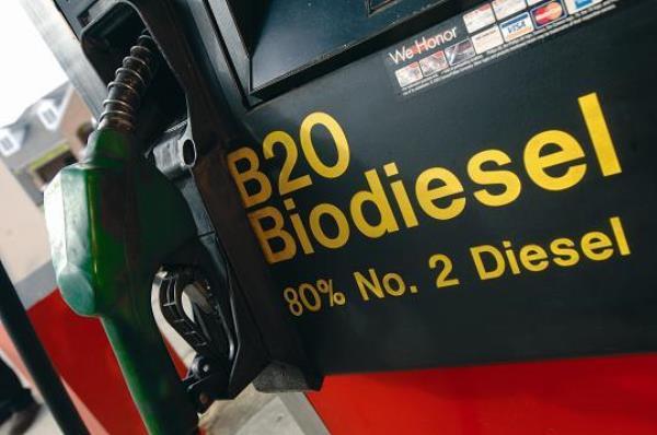 ประเทศในเขตอาเซียนเริ่มหันมาใช้ ฺB20