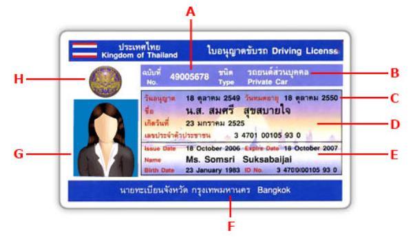 ตัวอย่างหน้าตาของใบอนุญาตขับขี่รถส่วนบุคคล