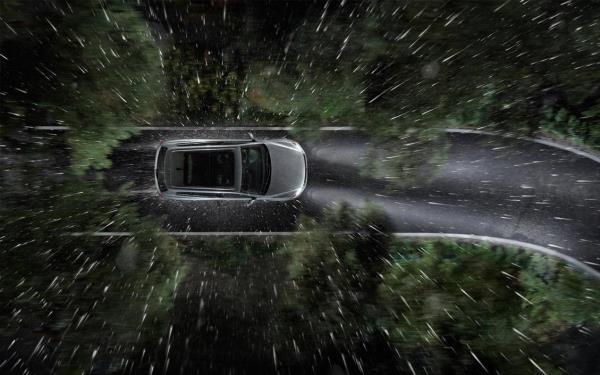 การขับรถท่ามกลางสายฝน มีโอกาสปะทะเข้ากับเศษกิ่งไม้ใบไม้