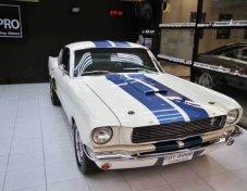 Sale Mustang fastback 1966 GT350